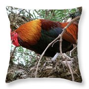 Roosting In San Juan Throw Pillow