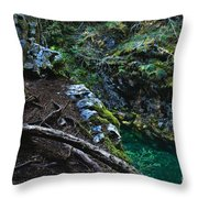 Rooted In Emerald  Throw Pillow