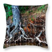 Rooting Section Throw Pillow