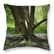 Roots Above Throw Pillow