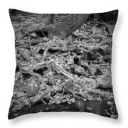 Roots And More Roots Throw Pillow