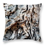 Roots Of Ostia Antica Throw Pillow