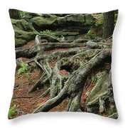 Roots On The Forest Floor Throw Pillow