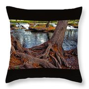 Roots On The River Throw Pillow