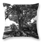 Roots To Roof Throw Pillow