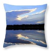 Rorschach Reflection Throw Pillow