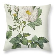 Rosa Alba Foliacea Throw Pillow by Pierre Joseph Redoute