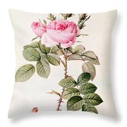 Rosa Bifera Officinalis Throw Pillow by Pierre Joseph Redoute