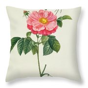 Rosa Gallica Flore Marmoreo Throw Pillow