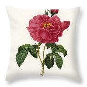 Rosa Gallica Throw Pillow
