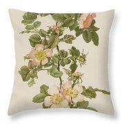 Rosa Hibernica Throw Pillow