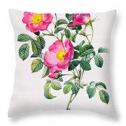 Rosa Lumila Throw Pillow by Pierre Joseph Redoute