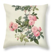 Rosa Multiflora Carnea Throw Pillow