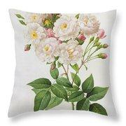 Rosa Noisettiana Throw Pillow by Pierre Joseph Redoute