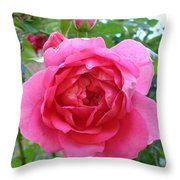 Rosa Zephrine  Throw Pillow