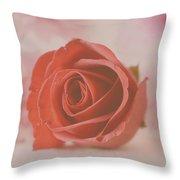 Rose #004 Throw Pillow