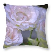 Rose 120 Throw Pillow by Pamela Cooper
