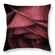Rose 2 Throw Pillow