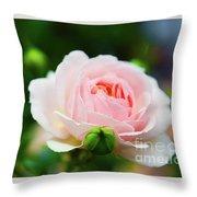 Rose 2 Throw Pillow
