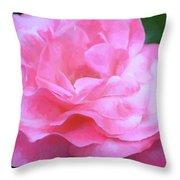Rose 384 Throw Pillow