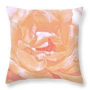 Rose 41 Throw Pillow