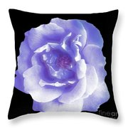 Rose 7 Throw Pillow