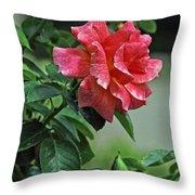 Rose 7898 Throw Pillow