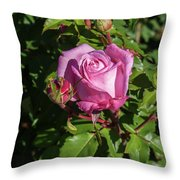 Rose And Bud Throw Pillow