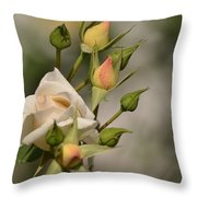 Rose And Buds Throw Pillow by Atul Daimari