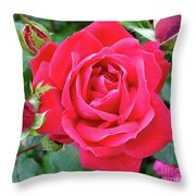 Rose And Buds - Double Knock Out Rose Throw Pillow