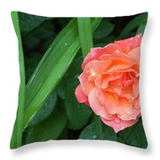 Rose And Day Lily Lives Throw Pillow