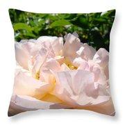 Rose Art Prints Canvas Sunlit Pink Rose Garden Baslee Troutman Throw Pillow