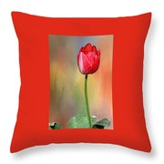 Red Tulip At Sunset By Kaye Menner Throw Pillow