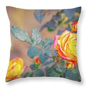 Rose At Sunset Throw Pillow