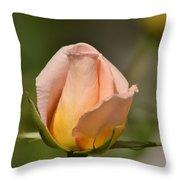 Rose Throw Pillow by Atul Daimari