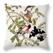 Rose Breasted Grosbeak Throw Pillow by John James Audubon