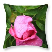 Rose Bud And Bee Throw Pillow