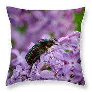 Rose Chafer On Lilac Throw Pillow