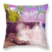 Rose Colored Splash At Mackenzie Throw Pillow