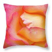 Rose Detail 2 Throw Pillow