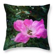 Rose Dew Throw Pillow