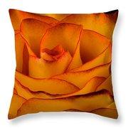 Rose Edge  Throw Pillow