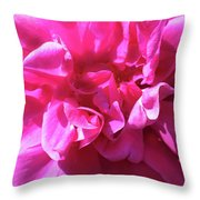 Rose Explosion Throw Pillow