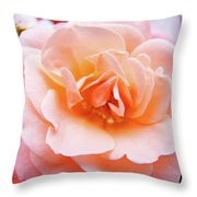 Rose Floral Art Print Peach Pink Roses Garden Canvas Baslee Troutman Throw Pillow