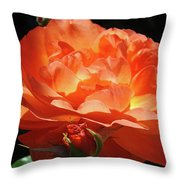 Rose Flower Art Prints Oragne Roses Summer Botanical Baslee Troutman Throw Pillow