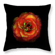 Rose Flower Color Abstract Throw Pillow