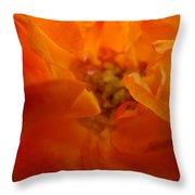 Rose Flower Orange Glowing Rose Giclee Baslee Troutman Throw Pillow