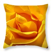 Rose Flower Orange Yellow Roses 1 Golden Sunlit Rose Baslee Troutman Throw Pillow