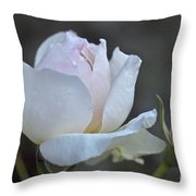 Rose Flower Series 14 Throw Pillow