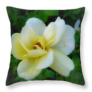 Rose From Home Throw Pillow